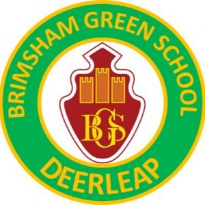 Brimsham-Green-School-Logo-300x300