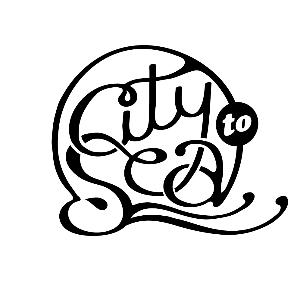 city-to-see-logo