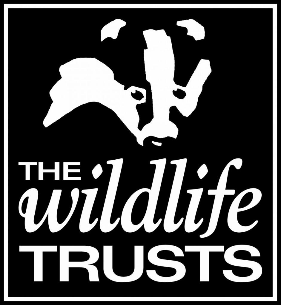 The-Wildlife-Trusts-logo1-941x1024